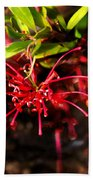 The Art Of Spider Flower Beach Towel