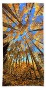 The Aspens Above - Colorful Colorado - Fall Beach Towel