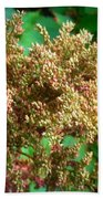 The Astible After The Bloom Beach Towel