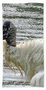The Bathing Wood Stork 2 Beach Towel