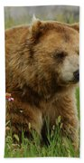 The Bear 1 Dry Brushed Beach Towel