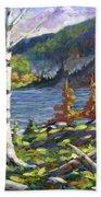 The Birches Beach Sheet