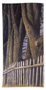 The Bird House Beach Towel by Jerry McElroy