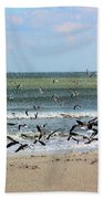 The Birds Beach Towel