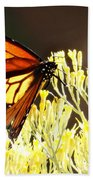 The Butterfly 2 Beach Towel