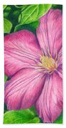 The Clematis Flower Beach Towel