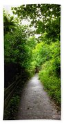 The Cliff Path At Lynton 4 Beach Towel