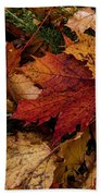 The Color Of Fall Beach Sheet