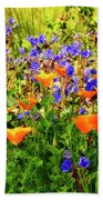 The Colors Of Spring  Beach Towel