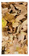The Colors Of The Leaves In Autumn Beach Towel