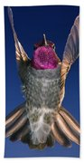 The Conductor Of Hummer Air Orchestra Beach Towel