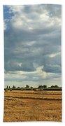 The Cornfield Beach Towel