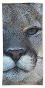 The Cougar 3 Beach Towel