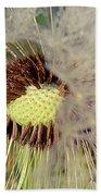 The Dandelion Nucleus Beach Towel