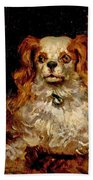 The Duke Of Marlborough. Portrait Of A Puppy Beach Towel