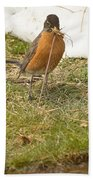 The Early Bird - Robin - Casper Wyoming Beach Towel