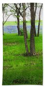 The Enchanted Forest Beach Towel