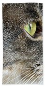 The Eye Of The Tiger  Beach Towel