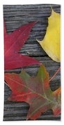 The Fallen Leaves Of Autumn Beach Towel
