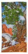 The Ferruginous Earth Of The Rocky Mountain West Beach Towel
