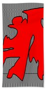 The Flim Flam Man Beach Towel by Eikoni Images