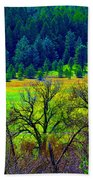 The Forest Echoes With Laughter 2 Beach Towel