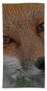 The Fox 4 Upclose Beach Towel