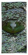 The Frog Beach Towel
