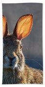 Golden Ears Bunny Beach Towel