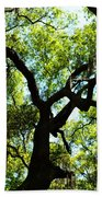 The Grace Of A Lonely Tree Beach Towel