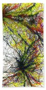 The Grand Symphony Of The Universe #635 Beach Towel