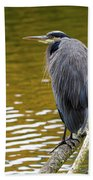 The Great Blue Heron Perched On A Tree Branch Beach Towel