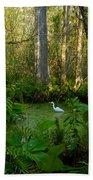 The Great Corkscrew Swamp Beach Towel