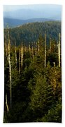 The Great Smoky Mountains Beach Towel