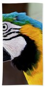 The Happy Macaw Beach Towel