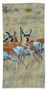 The Herd Beach Towel