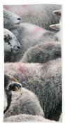 The Herdwicks Beach Towel