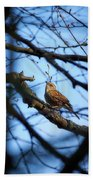 The Hiding Singer. Dunnock Beach Towel