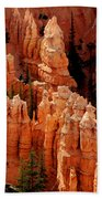 The Hoodoos In Bryce Canyon Beach Towel