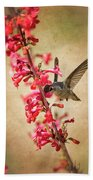 The Hummingbird And The Spring Flowers  Beach Towel