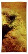 The Hunter . Portrait Of A Hawk . Texture . 40d7877 Beach Towel
