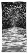 Live Oaks Lane With Shadows - Black And White Beach Towel