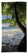 The Jungle At Onomea Bay  Beach Towel