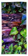 The Log In The Woods  Beach Towel