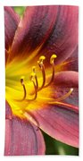 The Love Of Lilies Beach Towel