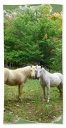 The Mares Watch Beach Towel