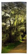 The Mighty Oaks Of Garland Ranch Park 2 Beach Towel