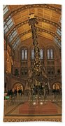 The Museum Of Natural History... London Beach Towel