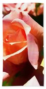 The Name Of A Rose Is Beauty Beach Towel