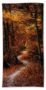 The Narrow Path Beach Towel